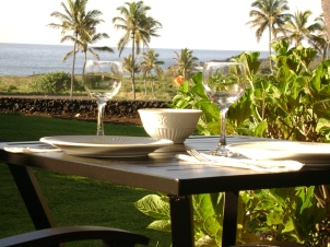 Hawaii vacation rental condo